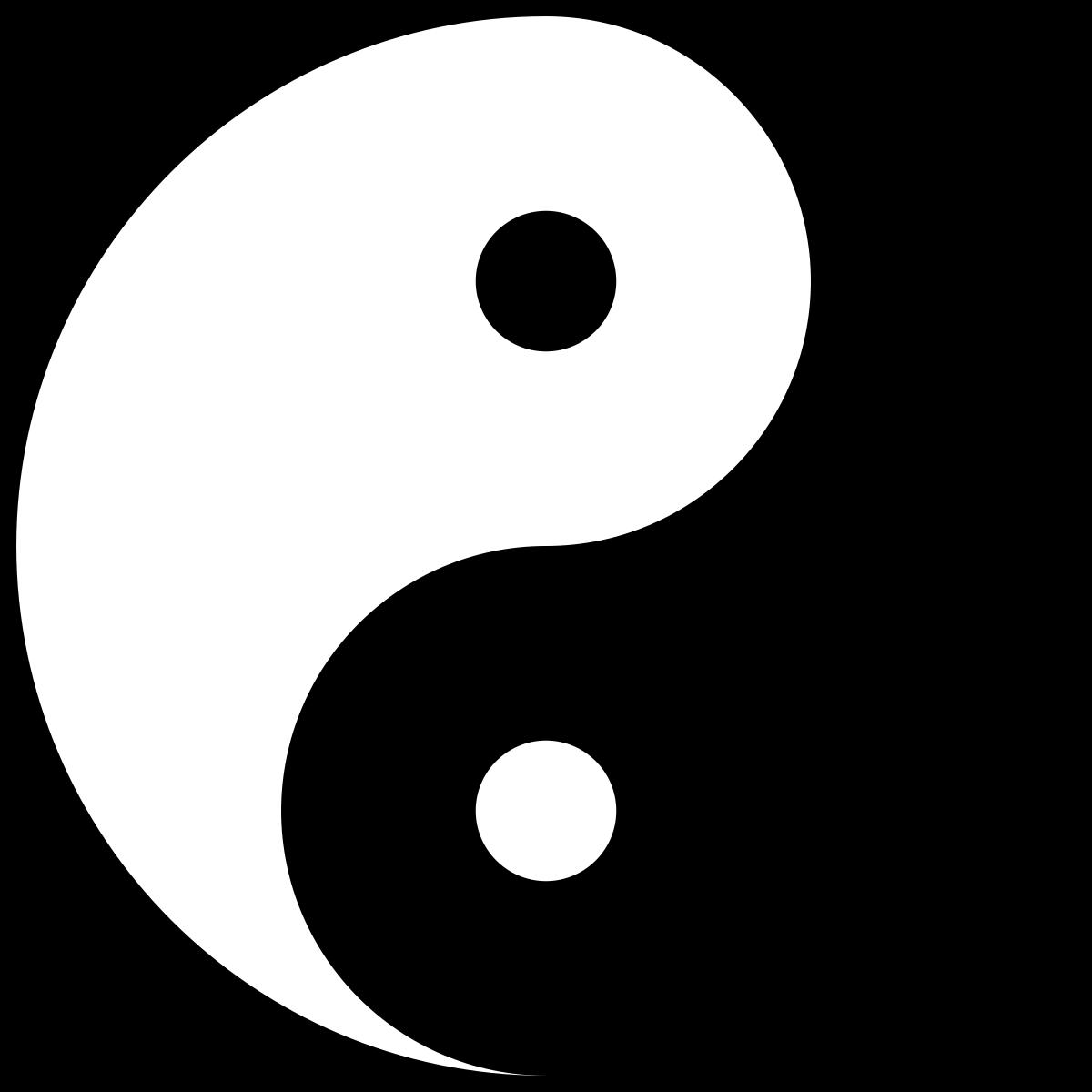 yin yang capital social contabilidade e gest o. Black Bedroom Furniture Sets. Home Design Ideas
