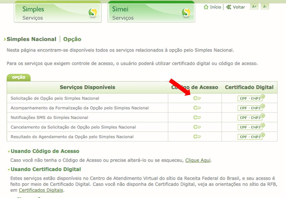 Site Simples Nacional tela de opções